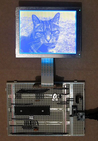 LCD driven by an ATmega644P, showing a picture of a cat.